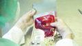 Czy homoseksualista może zostać dawcą krwi?